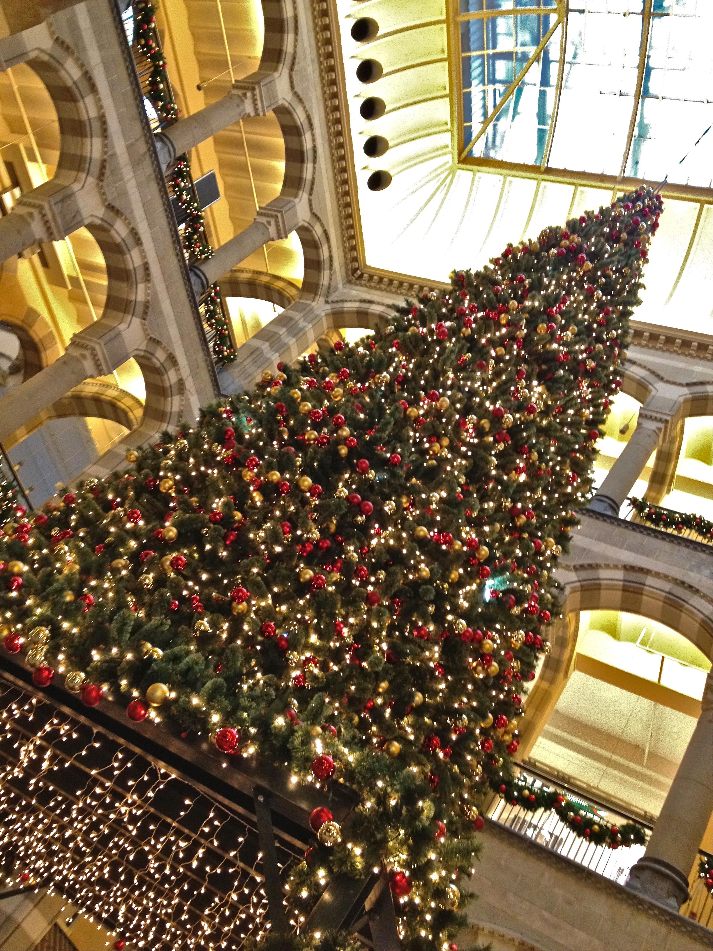 httpsmarkjwallisfileswordpresscom201112sh - Christmas Tree Shopping