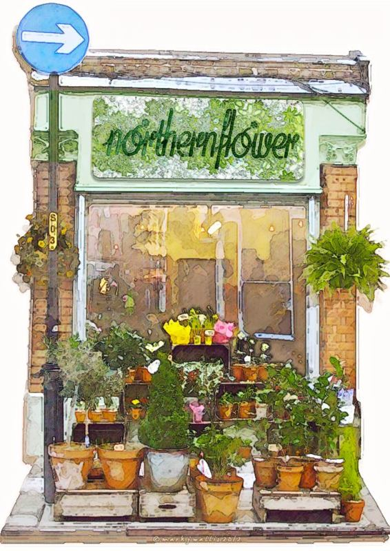 Northern Flower shop digital painting the vibes