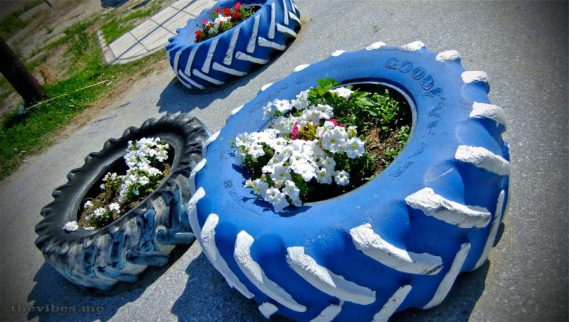 tyre flower displays olympic beach the vibes