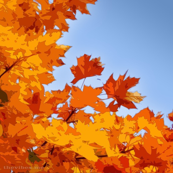 Autumn Leaves Cartoon
