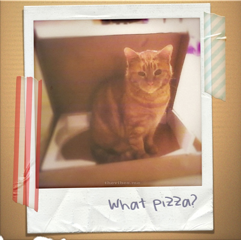 Sparky Pizza Cat by Mark Wallis on The Vibes