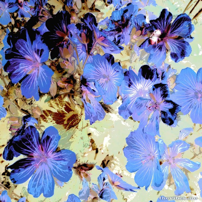A print design I made from a picture of some blue flowers