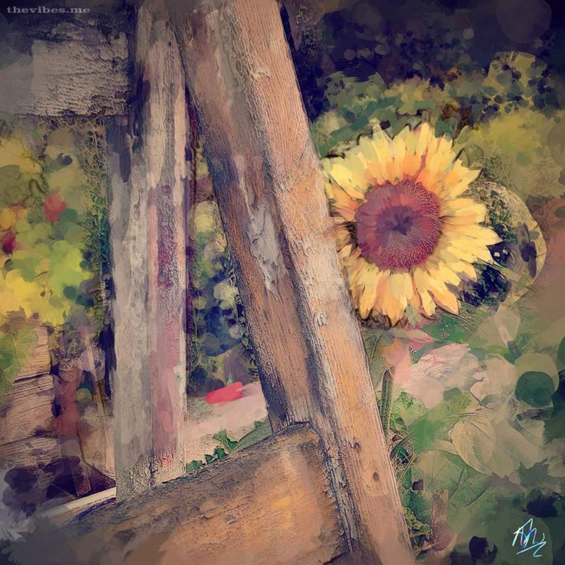 Sunflower - Digital Painting by Mark Wallis at The Vibes